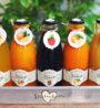 ovocne sirupy na domaci limonady do restauraci_kavaren_hotelu a gastronomii-2