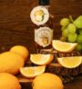 sos-zdravi-citronka_na-vysku-5-1